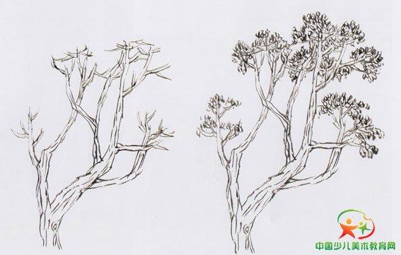 树画图片大全 树叶粘贴画图片大全 树叶画 树画法