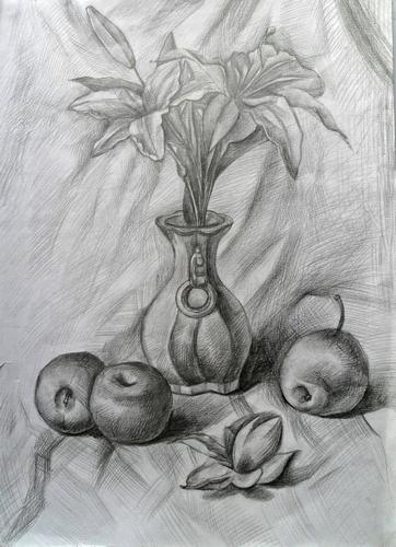 作品名称 素描花卉